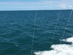 Sailfish kind of day hunter sportfishing deep sea for Deep sea fishing morehead city nc